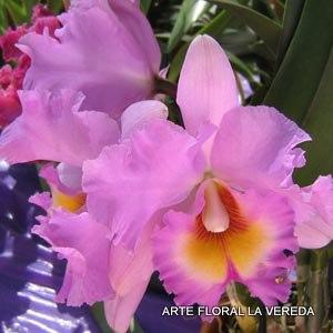 Flores naturales para tocados de flamencas
